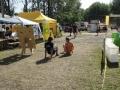 2012_07_18-21-tokaj-hegyalja_fesztival-100