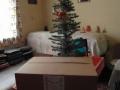 2012_12_22-karacsonyi_adomanyosztas-52