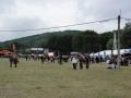 2013_06_26-29_hegyalja_fesztival_07